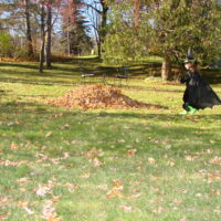 My little Witch a couple of years ago.  The leaf pile was irresistible.